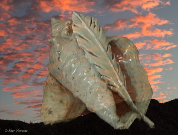 Ceramic Shell sculpture